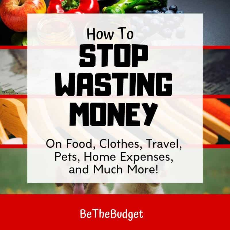 Square image that says 'how to stop wasting money on food, clothes, travel, pets, home expenses and much more!