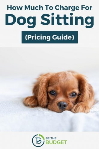 How much to charge for dog sitting | Be The Budget
